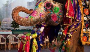 جاذبه های دیدنی هند